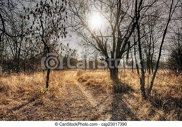 November landscape - csp23017390