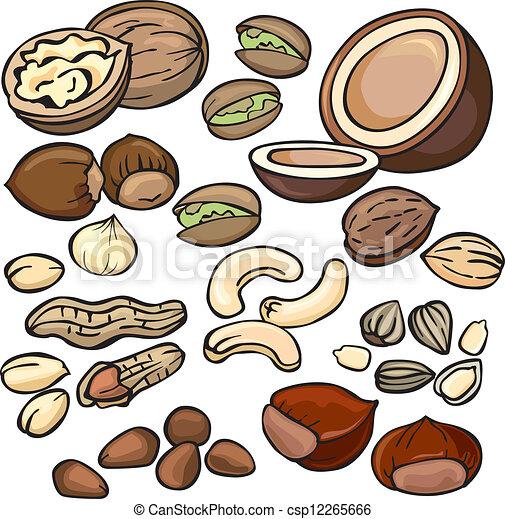 Clip art vectorial de nueces semillas conjunto icono  Nuts