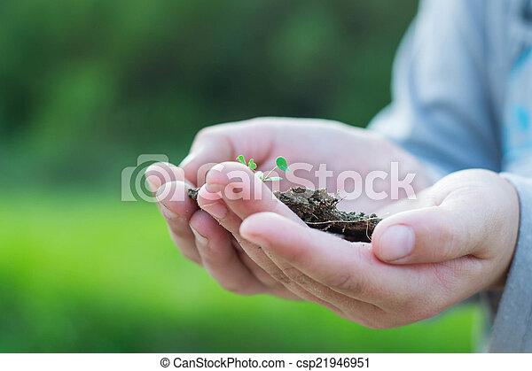 Tierra en nuestras manos - csp21946951