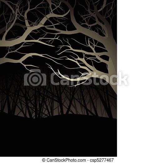 nuit, forêt - csp5277467