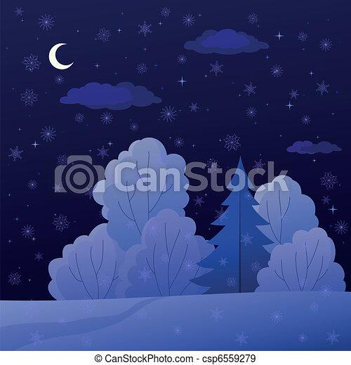 nuit, paysage, forêt, hiver - csp6559279