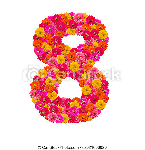 number 8 made from Zinnias flowers - csp21608026
