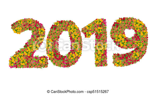 Numbers 2019 made from Zinnias flowers isolated on white background. Happy new year concept - csp51515267