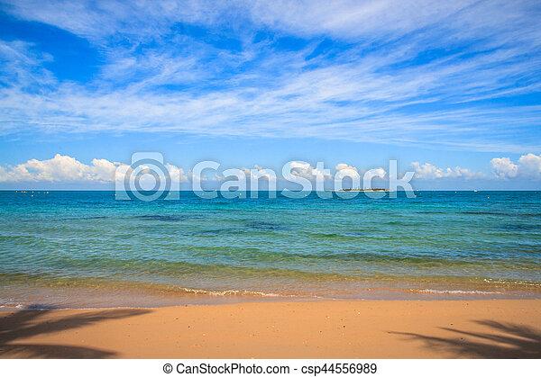 nuova caledonia, spiaggia - csp44556989