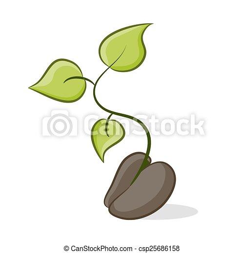 nuovo, pianta, crescita - csp25686158