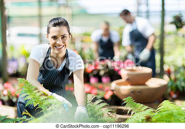 nursery worker trimming plants  - csp11196296