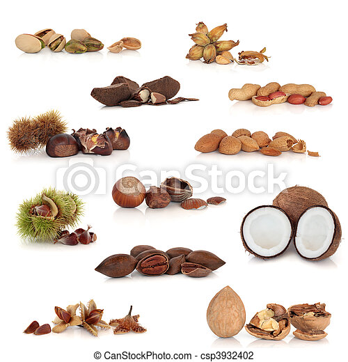 Nut Collection - csp3932402