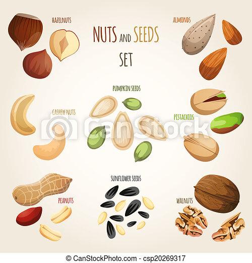 Nut mix set - csp20269317