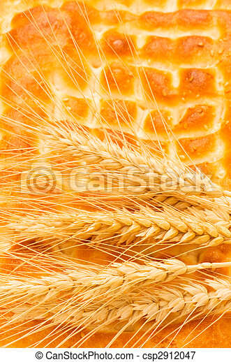 Nutrition concept with fresh bread and wheat ears - csp2912047