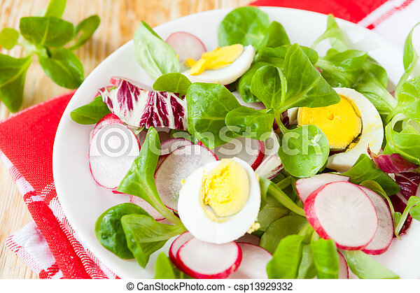 nutritious fresh salad with egg and radish - csp13929332
