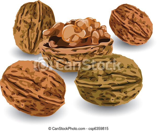 Nuts - csp6359815