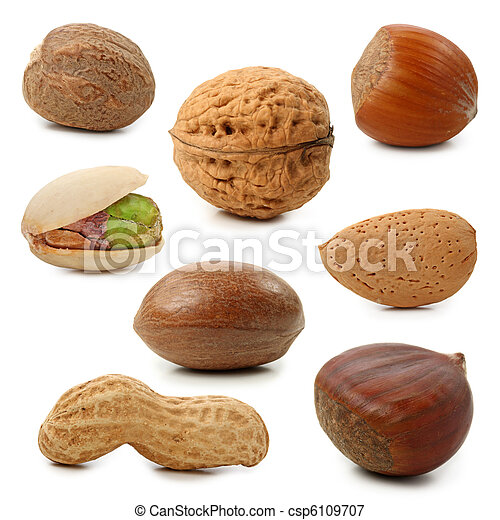 Nuts collection - csp6109707