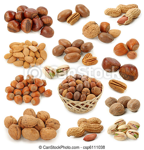 Nuts collection - csp6111038