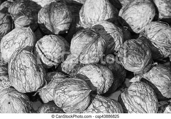 nuts - csp43886825