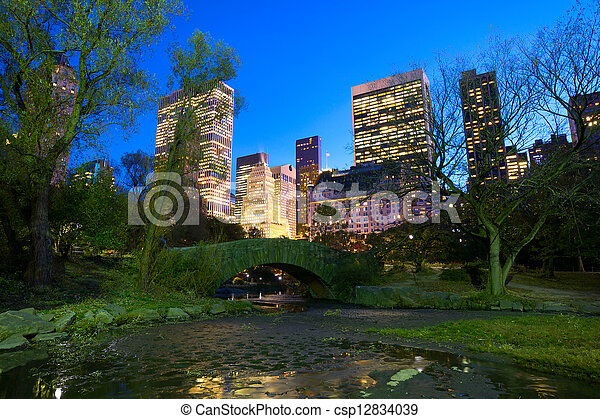 NYC Central Park at night - csp12834039