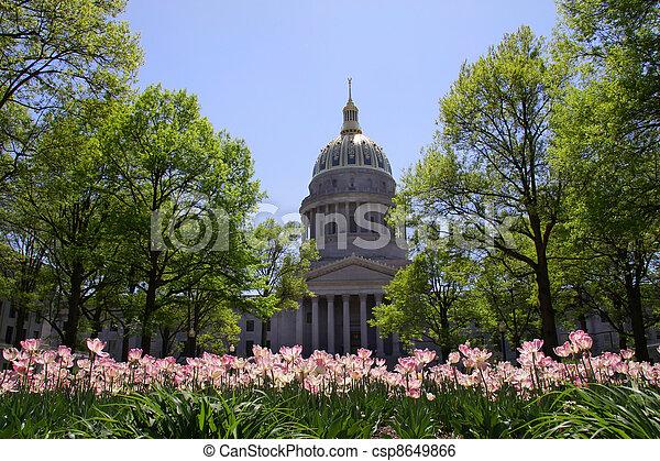 nyugat virginia, főváros - csp8649866