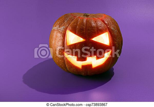 o, gato, calabaza halloween, o'lantern - csp73893867