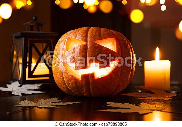 o, gato, halloween, o'lantern, calabazas - csp73893865