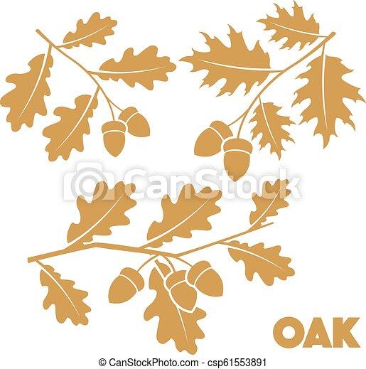Oak branch set - csp61553891