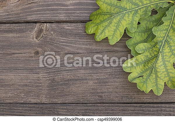 Oak leaves on wooden background - csp49399006
