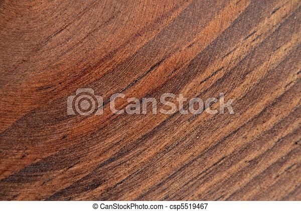 Oak texture - csp5519467