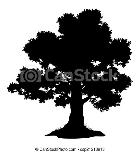 Oak tree and grass, silhouette - csp21213913