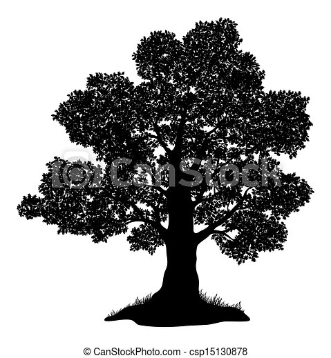 Oak tree and grass, silhouette - csp15130878