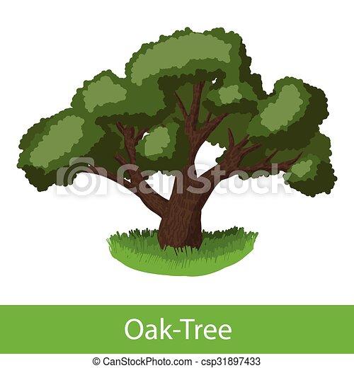 oak tree cartoon icon single illustration on a white vectors rh canstockphoto com oak tree cartoon images oak tree cartoon pictures