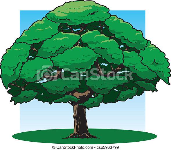 Oak tree - csp5963799