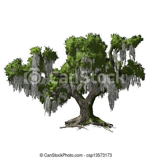 Oak tree isolated. Vector illustration - csp13573173