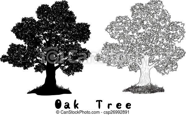 Oak Tree Silhouette, Contours and Inscriptions - csp26992891
