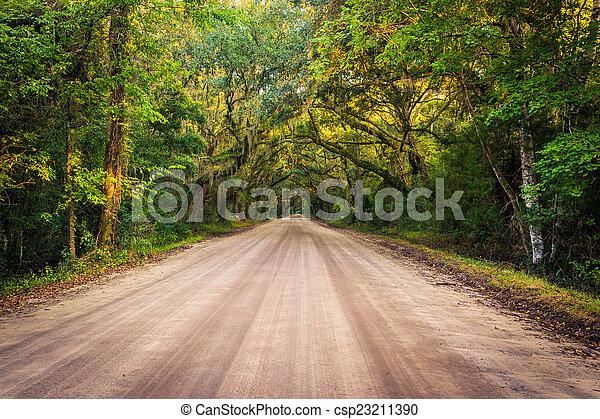 Oak trees along the dirt road to Botany Bay Plantation on Edisto - csp23211390