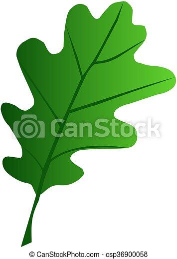 oak,Quercus petraea - csp36900058