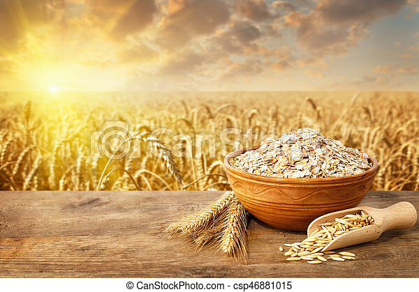 oat flakes in bowl on table - csp46881015