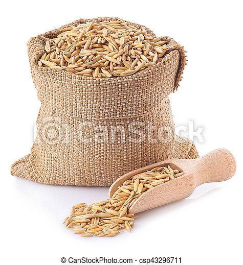oat grains in bag - csp43296711