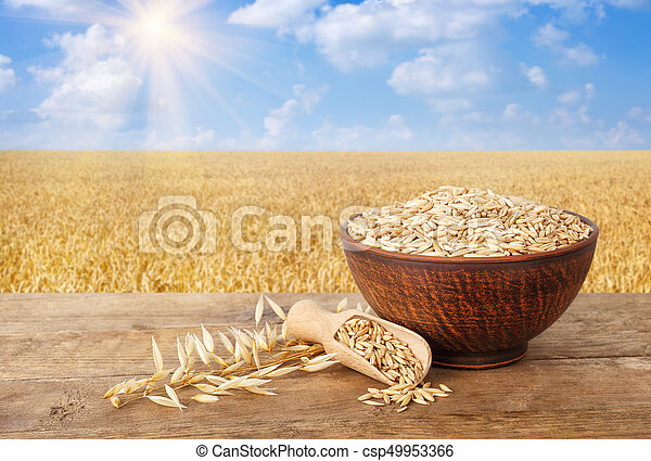 oat grains in bowl - csp49953366