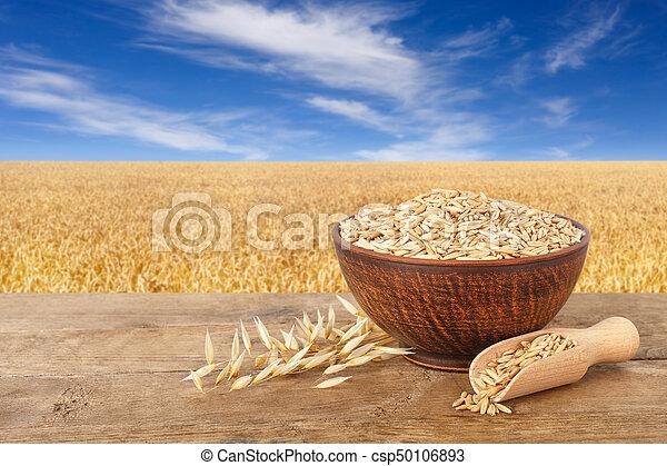 oat grains in bowl - csp50106893