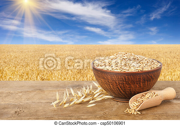 oat grains in bowl - csp50106901