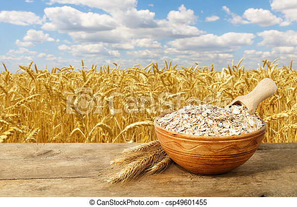 oat or wheat flakes in bowl - csp49601455