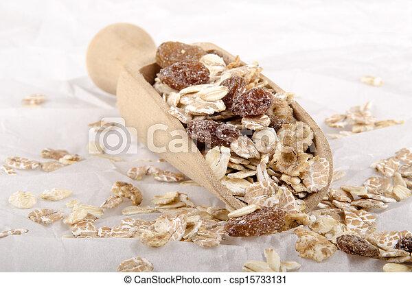 oatmeal and raisins on a shovel - csp15733131