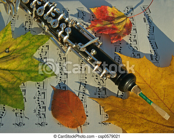Oboe on Fall Leaves - csp0579021