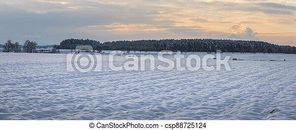 obzor, krajina, les, kopyto, bojiště, sněžný, zima - csp88725124