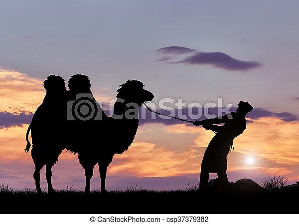 Beduino y camel silueta al atardecer - csp37379382