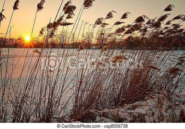 ocaso, invierno - csp8556738