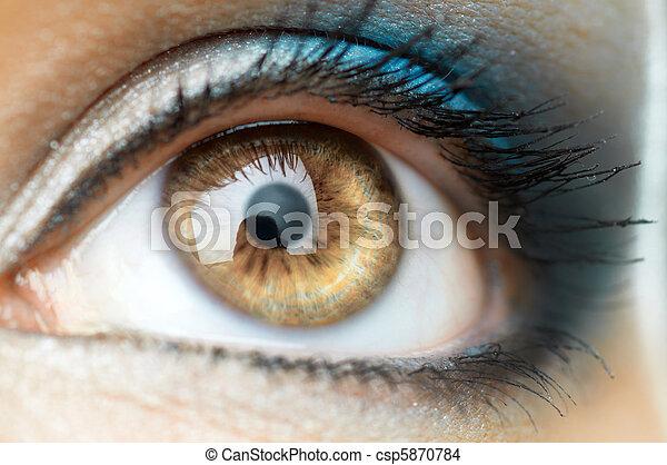 occhio, bellezza - csp5870784