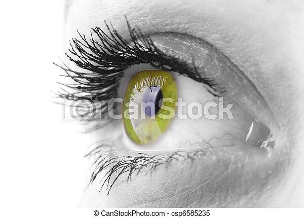 occhio donna - csp6585235