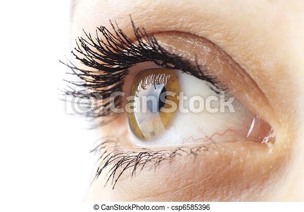 occhio donna - csp6585396