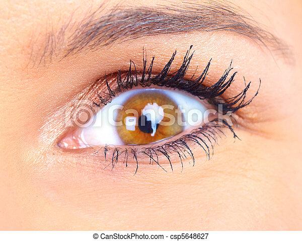 occhio donna - csp5648627
