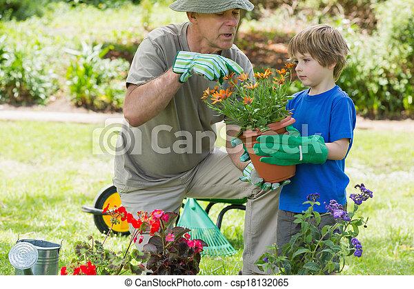 occupato, giardinaggio, nipote, nonno - csp18132065