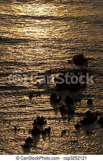 ocean at sunset - csp3252121